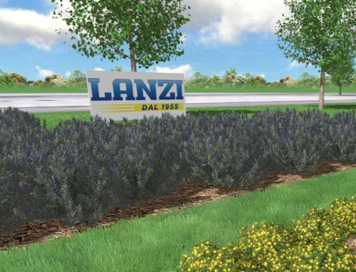 Un bosco con 65 alberi per i 65 anni di Lanzi Trasporti.